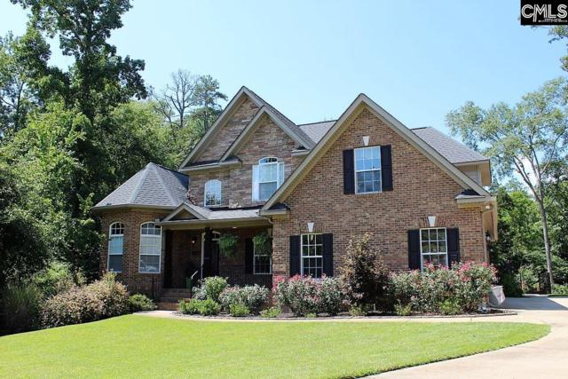 377 Bent Oak Drive, Chapin, SC 29036 (MLS #476781) :: Home Advantage Realty, LLC