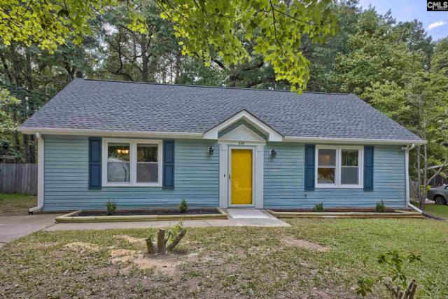446 Harleston Road, Irmo, SC 29063 (MLS #476806) :: Home Advantage Realty, LLC