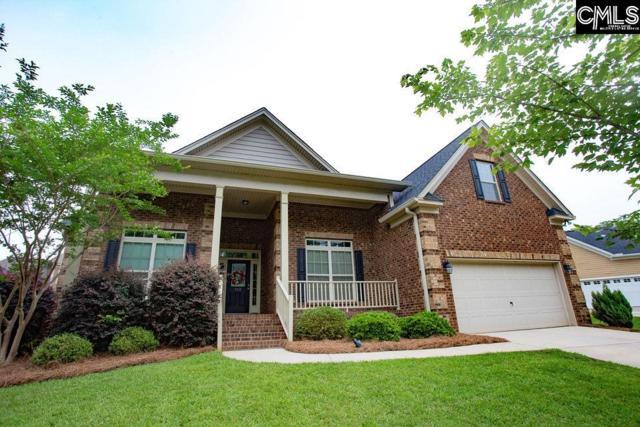 113 Irene Way, Lexington, SC 29072 (MLS #476838) :: EXIT Real Estate Consultants