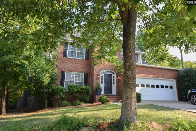 113 Hollenbeck Road, Irmo, SC 29063 (MLS #476996) :: The Olivia Cooley Group at Keller Williams Realty