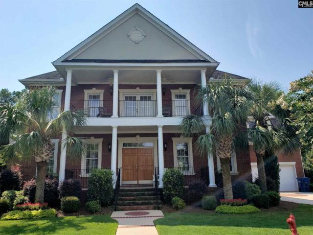 307 Pilgrim Point, Lexington, SC 29072 (MLS #477090) :: EXIT Real Estate Consultants