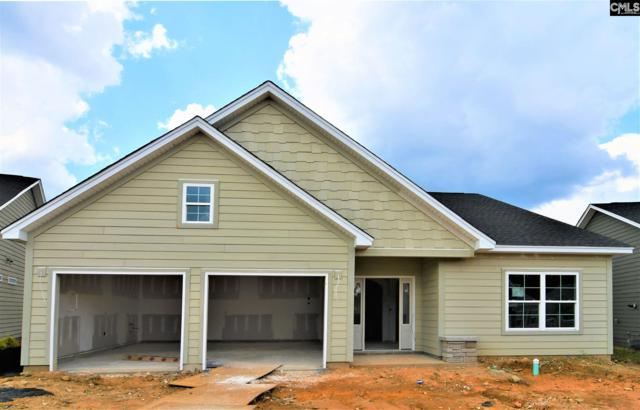 224 Matisse Trail, Chapin, SC 29036 (MLS #477185) :: The Olivia Cooley Group at Keller Williams Realty