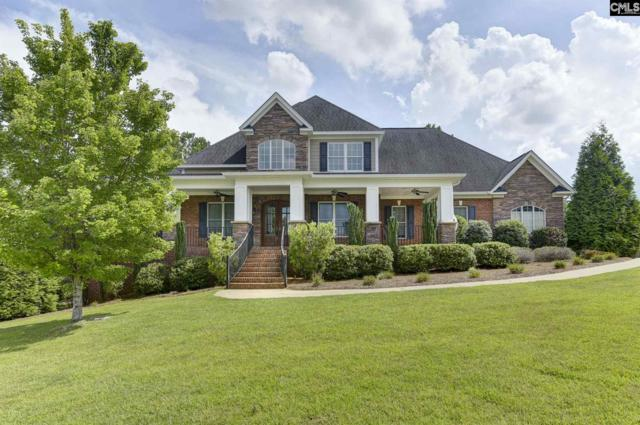 41 Cromwell Court, Irmo, SC 29063 (MLS #477196) :: EXIT Real Estate Consultants