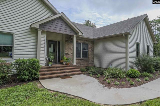 577 Edisto Lake Road, Wagener, SC 29164 (MLS #477287) :: EXIT Real Estate Consultants