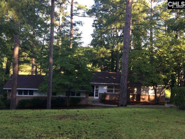 156 Lake Elizabeth Drive, Columbia, SC 29203 (MLS #477312) :: The Olivia Cooley Group at Keller Williams Realty