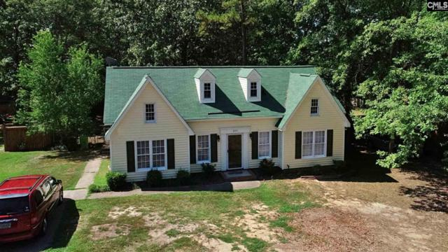 225 Dyers Hall Road, Irmo, SC 29063 (MLS #477512) :: Loveless & Yarborough Real Estate