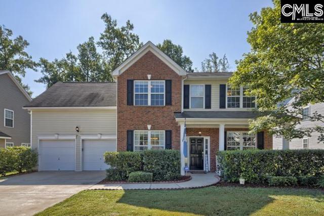 228 Loskin Lane, Lexington, SC 29073 (MLS #477541) :: The Olivia Cooley Group at Keller Williams Realty