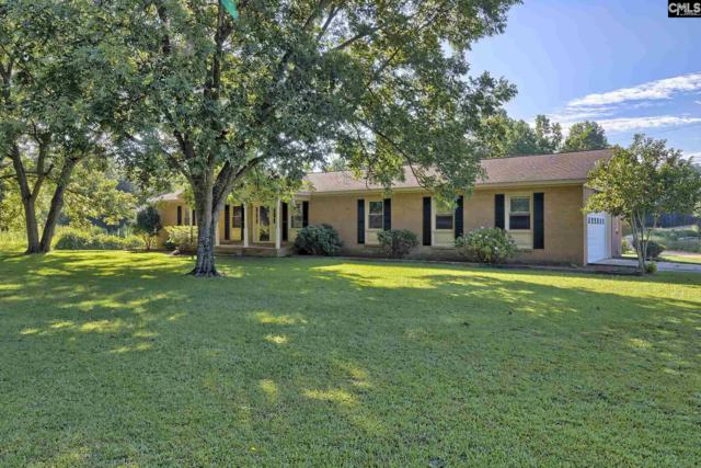 1249 Windy Road, Gilbert, SC 29072 (MLS #477564) :: EXIT Real Estate Consultants