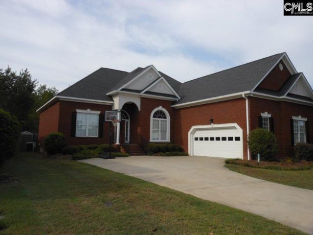 137 Royal Lythan Drive, Lexington, SC 29072 (MLS #477595) :: EXIT Real Estate Consultants
