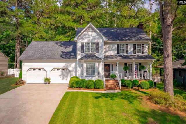 325 Mapleview Drive, Columbia, SC 29212 (MLS #477678) :: Home Advantage Realty, LLC