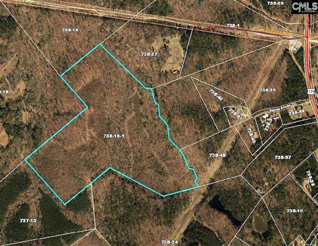 Lot 16-1 Holy Trinity Church Road 16-1, Little Mountain, SC 29075 (MLS #477766) :: Home Advantage Realty, LLC