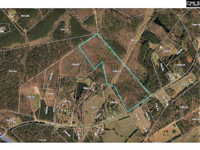 Lot 15 Holy Trinity Church Road #15, Little Mountain, SC 29075 (MLS #477769) :: Home Advantage Realty, LLC