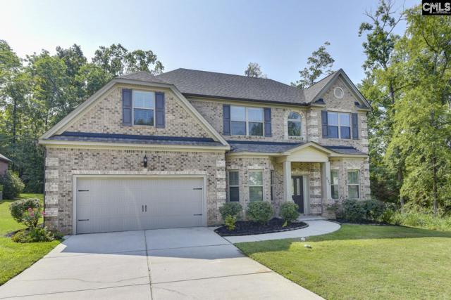 680 Village Market Drive, Chapin, SC 29036 (MLS #477857) :: EXIT Real Estate Consultants