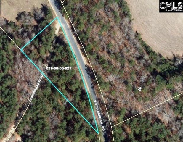 0 Bottlebrush Road, North, SC 29112 (MLS #477860) :: Home Advantage Realty, LLC