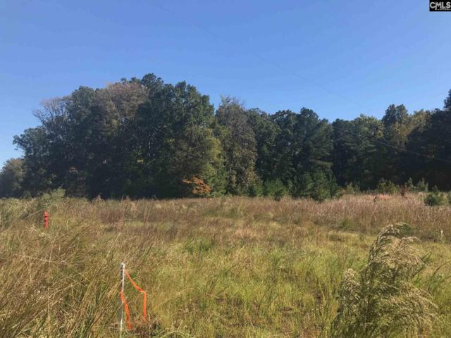3342 E Lot A E Peach Road, Ridgeway, SC 29130 (MLS #477900) :: The Olivia Cooley Group at Keller Williams Realty