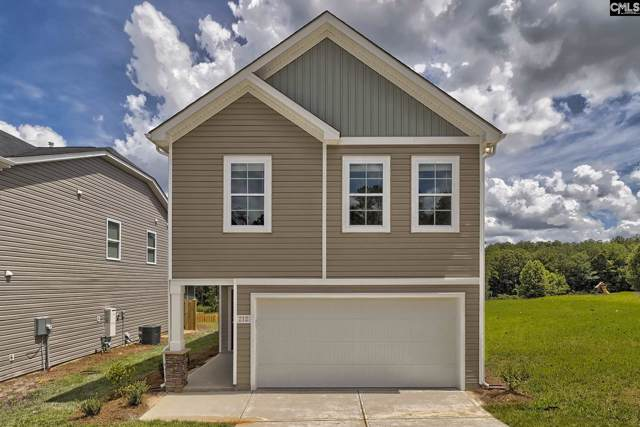 233 Wannamaker Way, Columbia, SC 29223 (MLS #478789) :: EXIT Real Estate Consultants