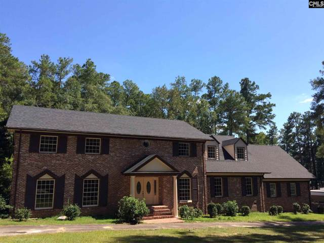 225 Mason Drive, Orangeburg, SC 29118 (MLS #478998) :: EXIT Real Estate Consultants