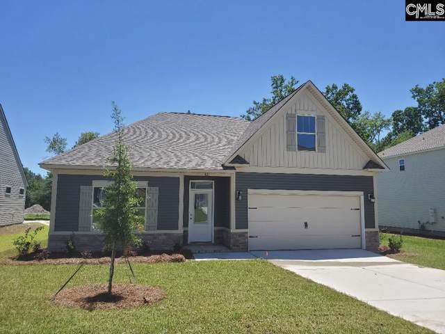 821 Red Solstice (Lot 162) Court, Lexington, SC 29073 (MLS #479070) :: Home Advantage Realty, LLC