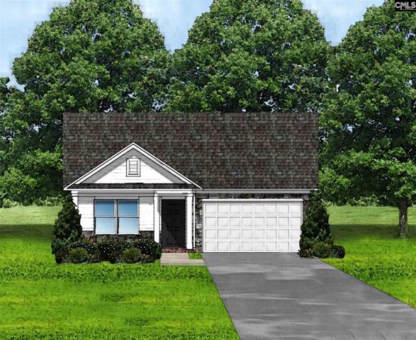 348 Summer Creek (Lot 43) Drive, West Columbia, SC 29172 (MLS #479174) :: EXIT Real Estate Consultants