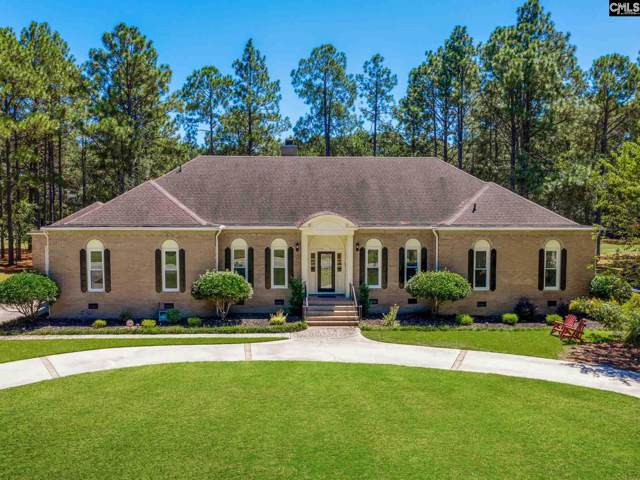 309 Wood Duck Road, Columbia, SC 29223 (MLS #479188) :: Resource Realty Group