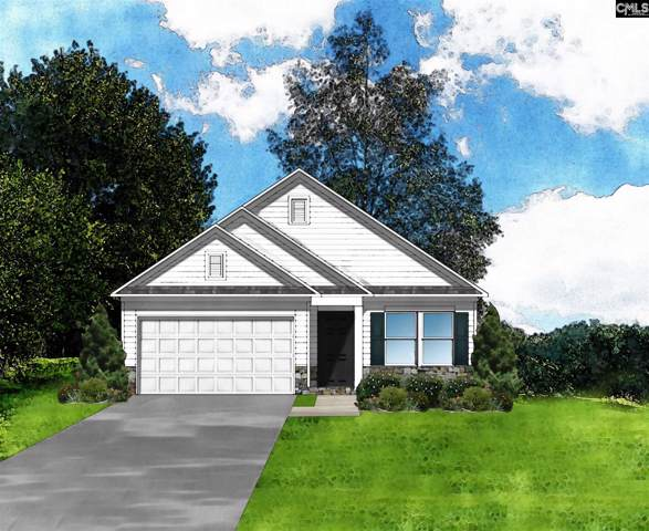 344 Summer Creek (Lot 42) Drive, West Columbia, SC 29172 (MLS #479194) :: EXIT Real Estate Consultants