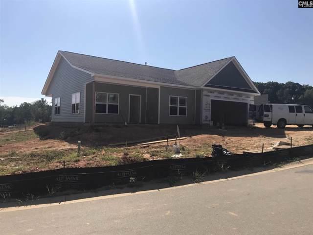 202 Shoals Landing Drive, Columbia, SC 29212 (MLS #479217) :: Fabulous Aiken Homes & Lake Murray Premier Properties