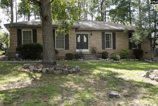 203 Rama Lane, Lexington, SC 29072 (MLS #479221) :: Home Advantage Realty, LLC