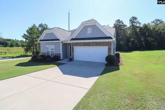 128 Sunny View Lane, Lexington, SC 29073 (MLS #479237) :: EXIT Real Estate Consultants