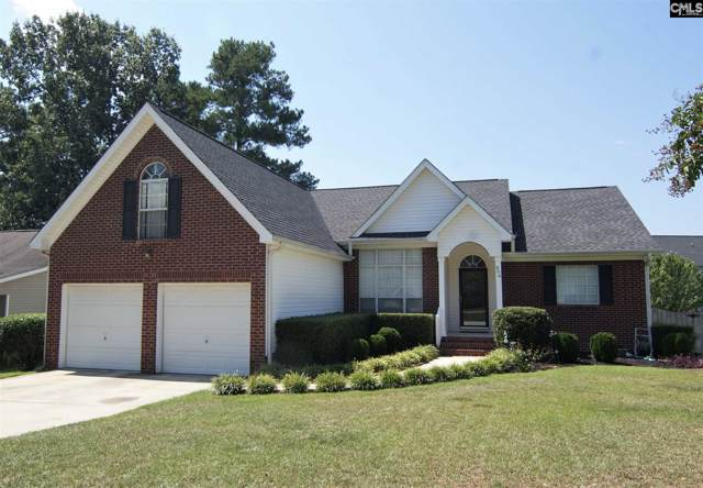 206 Delaine Woods Drive, Irmo, SC 29063 (MLS #479439) :: EXIT Real Estate Consultants