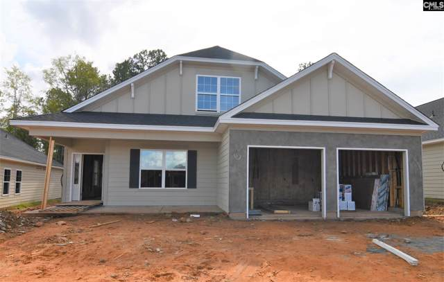 418 Sapphire Lane, Chapin, SC 29036 (MLS #479441) :: Loveless & Yarborough Real Estate