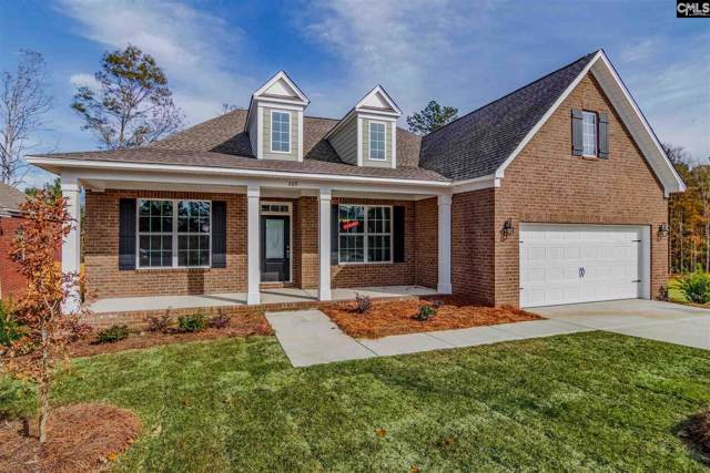 269 Cedar Hollow Lane, Irmo, SC 29063 (MLS #479541) :: EXIT Real Estate Consultants