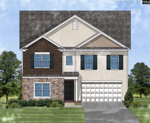 12 Texas Black Way, Elgin, SC 29045 (MLS #479604) :: EXIT Real Estate Consultants