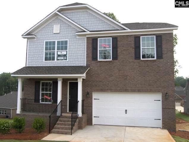 328 Berlandier Lane, Columbia, SC 29212 (MLS #479638) :: EXIT Real Estate Consultants