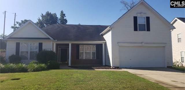 313 Buckthorne Drive, Lexington, SC 29072 (MLS #479704) :: EXIT Real Estate Consultants