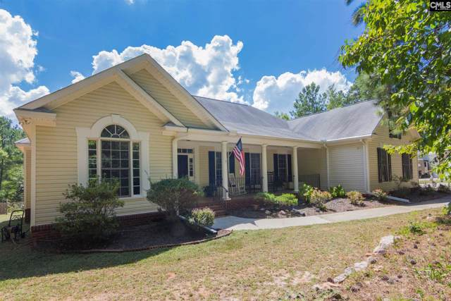 134 Loafers Glory Court, Chapin, SC 29036 (MLS #479721) :: EXIT Real Estate Consultants