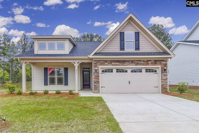 216 Laurelbrook Drive, Chapin, SC 29036 (MLS #479816) :: EXIT Real Estate Consultants