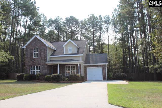 10 Salters Lane, Hopkins, SC 29061 (MLS #479823) :: EXIT Real Estate Consultants