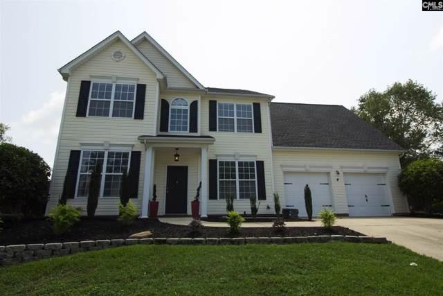 209 Beltrees Drive, Lexington, SC 29072 (MLS #479867) :: EXIT Real Estate Consultants