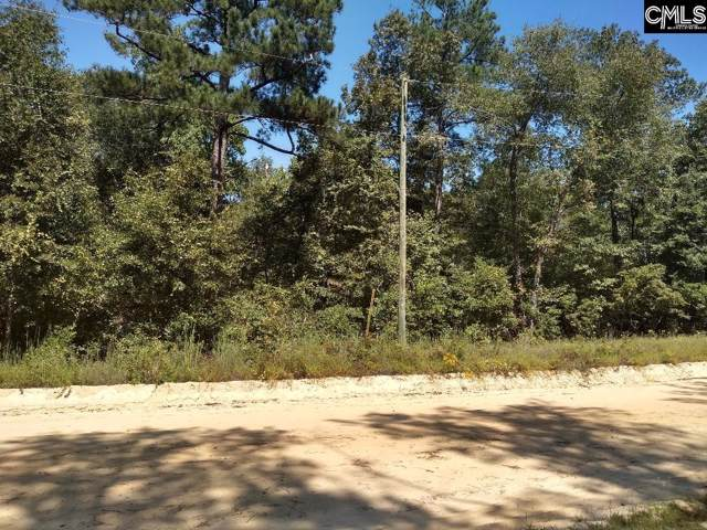 0 Rabbit Road, Lexington, SC 29072 (MLS #479944) :: EXIT Real Estate Consultants