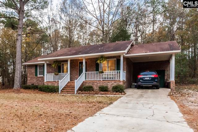 96 Dogwood Springs Road, Bishopville, SC 29010 (MLS #480208) :: EXIT Real Estate Consultants