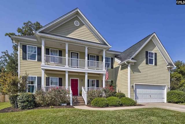 445 Maypop Lane, Irmo, SC 29063 (MLS #480226) :: EXIT Real Estate Consultants
