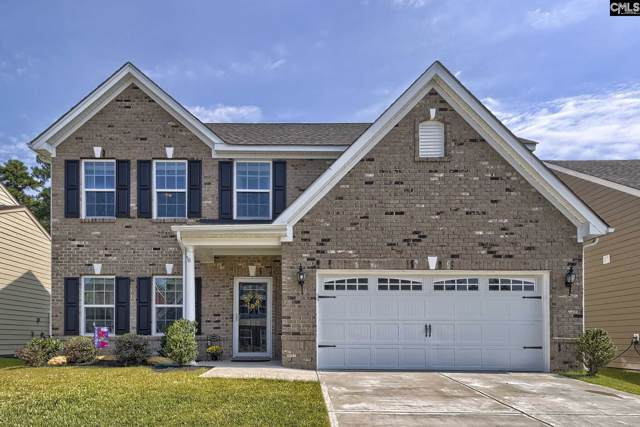 305 Placid Drive, Irmo, SC 29063 (MLS #480238) :: EXIT Real Estate Consultants
