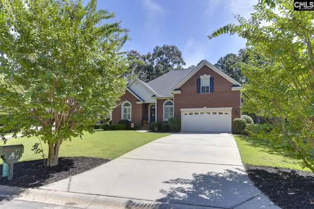 220 Pointe Overlook Drive, Chapin, SC 29036 (MLS #480257) :: EXIT Real Estate Consultants