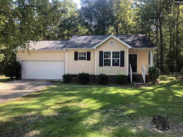 116 Smallwood Drive, Chapin, SC 29036 (MLS #480294) :: EXIT Real Estate Consultants