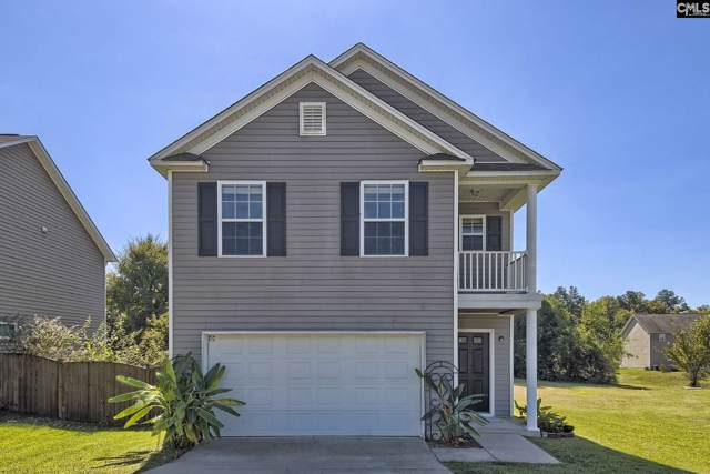 150 Wingspan Way, Chapin, SC 29036 (MLS #480324) :: EXIT Real Estate Consultants