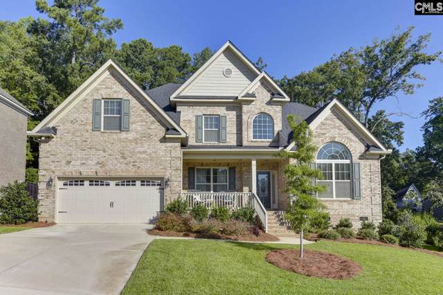171 Dark Hollow Drive, Lexington, SC 29073 (MLS #480345) :: EXIT Real Estate Consultants