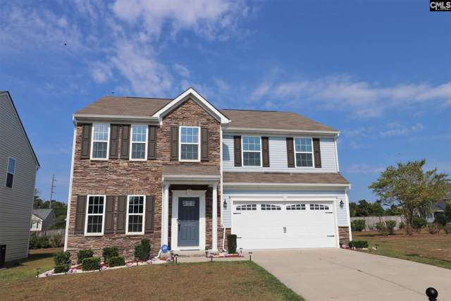 435 Freshwater Drive, Columbia, SC 29229 (MLS #480412) :: Home Advantage Realty, LLC