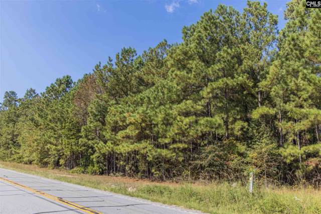 0 Misty Road, Gilbert, SC 29054 (MLS #480652) :: EXIT Real Estate Consultants