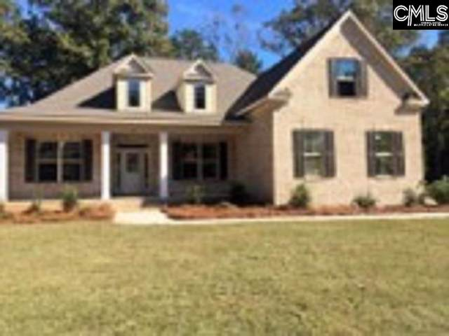 219 Hilton View Court, Chapin, SC 29036 (MLS #480754) :: The Olivia Cooley Group at Keller Williams Realty