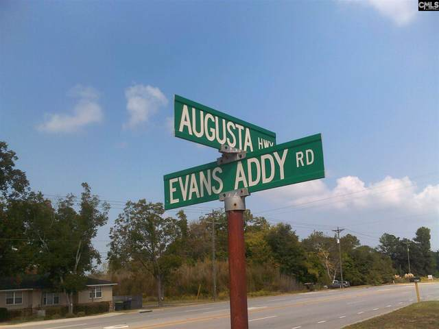 103 Evans Addy, Gilbert, SC 29054 (MLS #481011) :: EXIT Real Estate Consultants